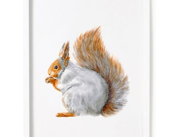 Squirrel Print of Watercolor Painting, Animal Giclee Print