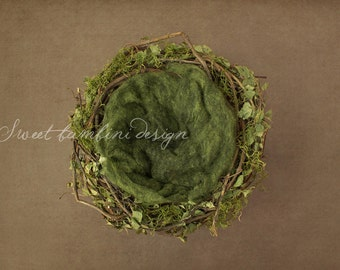 Digital Prop/Backdrop Newborn Photography Natural Leaf and Moss Nest - Instand Download