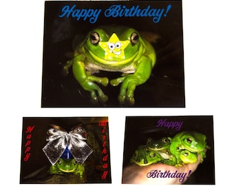 Stickyfrogs Birthday Cards, Photo Greeting Note Cards - Set of 6 - Happy Birthday Folded Cards with Envelopes and Seals