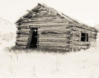 Rustic shack Photograph dustbowl depression abandoned shed sepia simple settlers - There ain't nothin' that I need - fine art photo