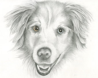 Custom Pet Portrait , Dog Drawing, Original Art, Hand Painted Art from your Photo