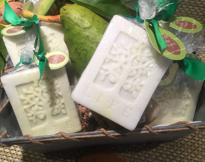 Featured listing image: Tree of Life, Avocado Soap