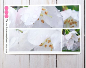 crabapple blossom planner stickers | white blossom photo stickers | full box planner stickers |  | vinyl matte stickers | spring flowers