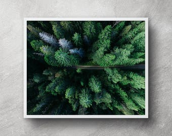 Aerial forest photography, Digital download, Forest wall art, Forest artwork, Nature photography, Forest print, Printable art, Wall art