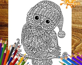 Cool Beautiful Owl Adult Coloring Page OWL Book Digital Instant PDF Download Printable