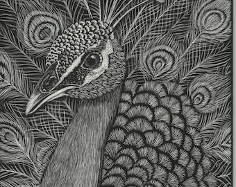 Signed Scratchboard Prints 5 x 7 - Free Shipping