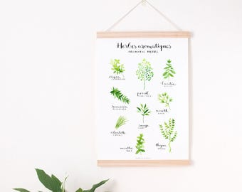 culinary print, herb art print, botanical kitchen, garden herbs print, kitchen art print, green kitchen art, herb print, botanical print