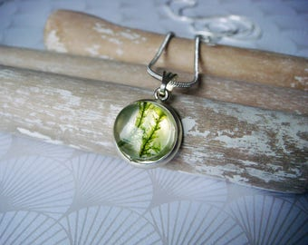 Real moss pendant necklace