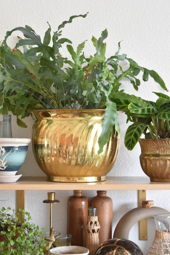 large shiny hollywood regency brass planter / flower pot