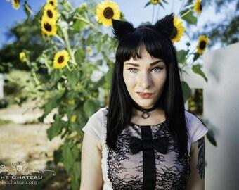 Black Kitten Ears