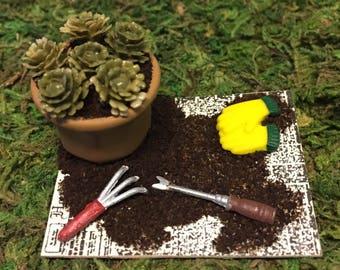 Miniature Dollhouse Succulent Planting Set - One Inch Scale - Fairy Garden - Miniature Flowers - Miniature Garden - Dollhouse Flowers
