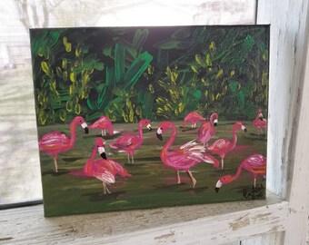 Flamingo hunts
