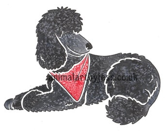 STANDARD POODLE - black Poodle pudel caniche dog cartoon original mounted watercolour painting, by York artist J Chappell - perfect gifts