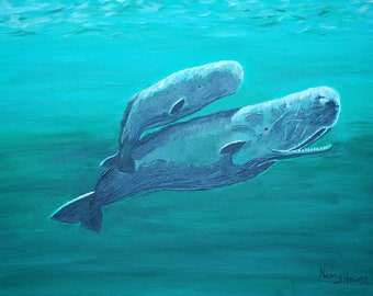 Sperm Whale and Calf
