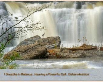 The Art of Haiku: Blue Heron Falls- Balance/Power/Determination