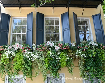 Charleston Window Box Photography, Charleston Prints, Charleston French Quarter Window Box, Charleston Window Flower Box Photography Prints