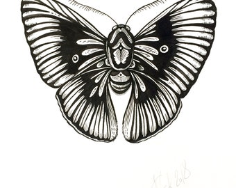 ORIGINAL butterfly ink drawing, butterfly Illustration, animal art ,line drawing, black and white wall art, gift, home decor