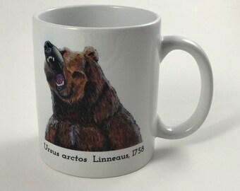 Hand Painted Artwork - Bear Mug - 11 oz. - Ceramic - Ursus arctos  Linneaus, 1758 - Brown Bear - Ursidae - Science - Coffee Mug