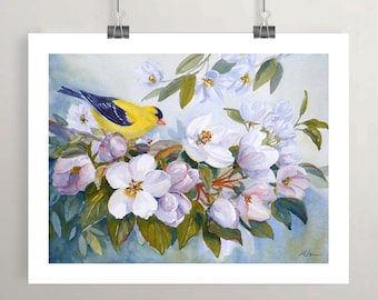 goldfinch bird art print, nature art, apple blossoms, flower print wall art by Janet Zeh Original Art