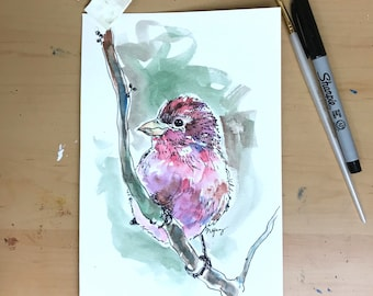 Purple Finch- Ohio Bird Series
