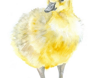 Yellow Baby Goose Watercolor Painting 4 x 6 Fine Art Giclee Reproduction - Nursery Art - Farm Animals - Gosling