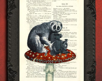 Loris art, slow loris on red mushroom, monkey toadstool print camera art upcycled french book art print on recycled book page