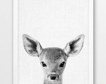 Deer Print, Deer Fawn Photo, Woodlands Animals Photography, Nursery Animal Wall Art, Baby Animal Black White Photography, Kids Room Decor