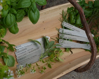 Stainless Steel Herb Labels (set of 10)