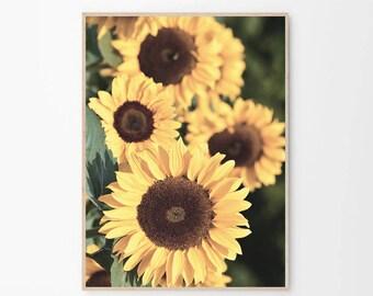 Sunflower Print,Sunflower Poster,Sunflower,Prints,Print,Wall Art,Sunflower Wall Art,Art Prints,Wall Prints,Large Wall Art,Sunflower Decor