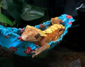 Gecko/Lizard Hammock