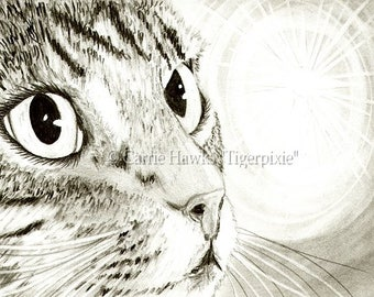 Tabby Cat Drawing Fairy Light Cat Art Big Eye Art Portrait Fantasy Cat Art Limited Edition Canvas Print 11x14 Art For Cat Lover