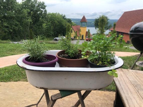vintage enameled steel washtub for plants or drinks