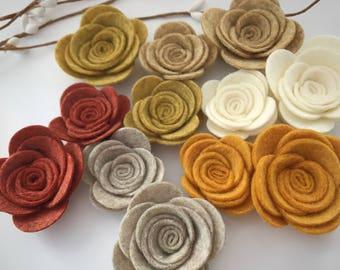 October glory rose mix