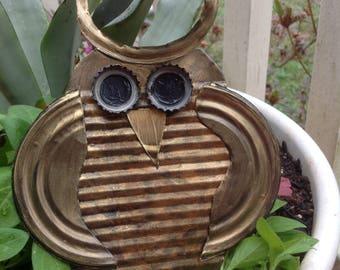 Little Hoot Owl- FREE SHIPPING!