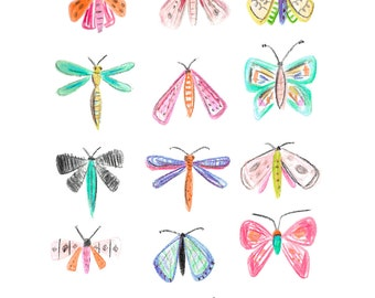 Winged Beauties Collection - Art Print 5x7, 8x10, 11x14 Butterfly & Moth