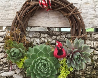 Succulent Wreath with a Red Cardinal, succulent arrangement, succulent gift, bird lover gift, ohio state bird gift, thank you gift