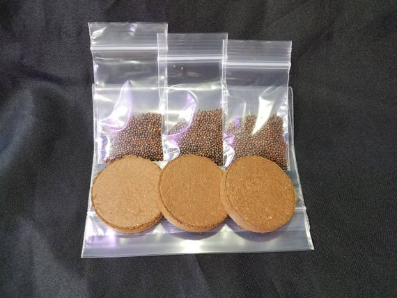 Refill Kits, Three Grow Media Wafers and Seeds, Assorted