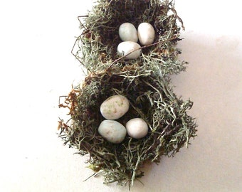"Green Woodland Birds Nests - 3"" primitive nests w/ white eggs, set of TWO"