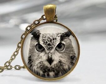 Owl Pendant, Bird Art Necklace, Owl Jewelry, Bird Art Pendant, Bird Jewelry, Owl Gift, Owl Art Pendant, Bronze, Silver, 011