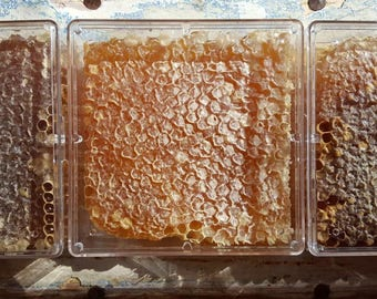Fair Share Honey - Wild Virgin Honey from Rescued Neighborhood Bees - 4 X 4 Square, Sweet Magic  !