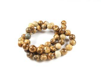 10 pearls 8mm LBP00230 natural Jasper