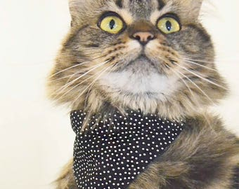CUTIE bandana - over the collar - cats, kittens & dogs - Handmade in Canada