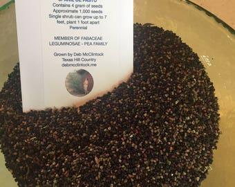 Indigo seed for Indigofera Suffruticosa or Anil De Pasto Seed Pack
