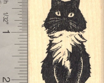 Domestic Longhaired Black and White Cat Rubber Stamp H14020 WM