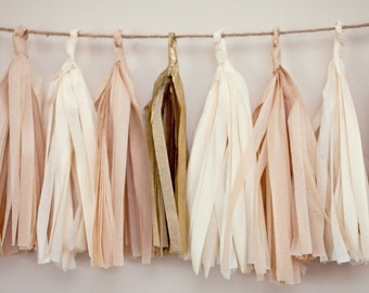 Tassel Party Garland: Blush