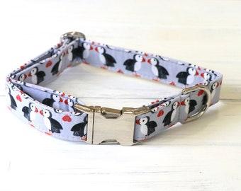 Gray Puffin Penguin Dog Collar, gray dog collar, penguin dog collar, puffin penguin, dog collars, girl dog collar, boy dog collar, dogs
