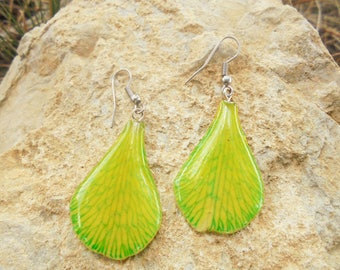 Orchid earrings. Amazing nature.