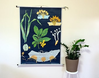Vintage Pull-Down Chart- Germany- Educational Classroom Poster- Rust Wheat/Rye- Jung Koch Quentell