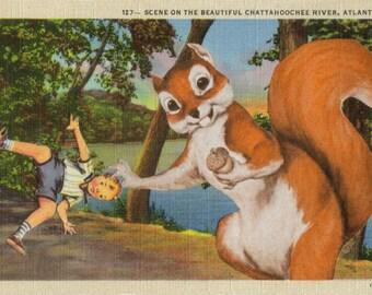 Original Art Collage, Nutty Squirrel Art, Woodland Animal, Woodsy Forest Creature