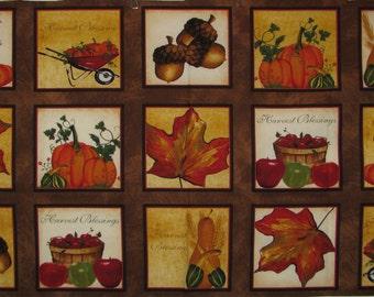 FREE SHIPPING - Beauty of Autumn Harvest Blessings Quilt Blocks panel -  15 blocks
